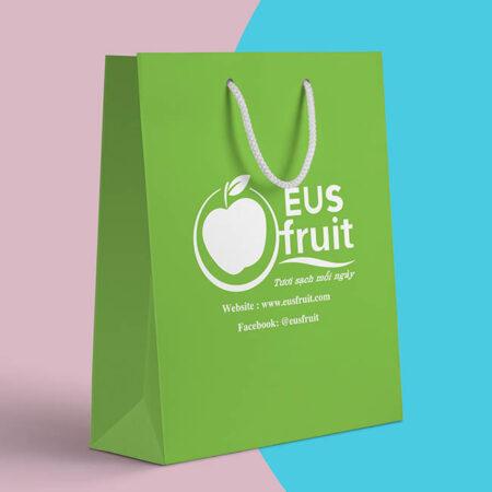 Túi giấy hoa quả Eus Fruit